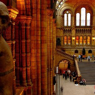 Animal Planet in London Natural History Museum
