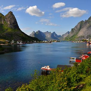 Beautiful Reine